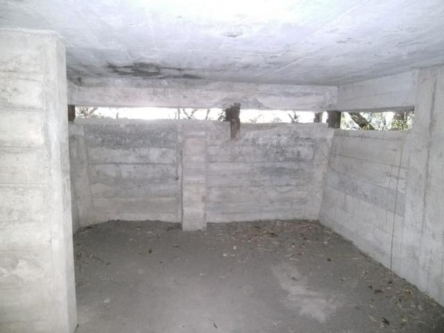 東金観測所 (4)