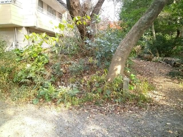 浜松陸軍墓地 (6)