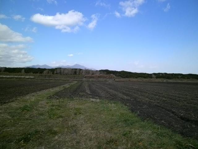 野里格納壕 (5)