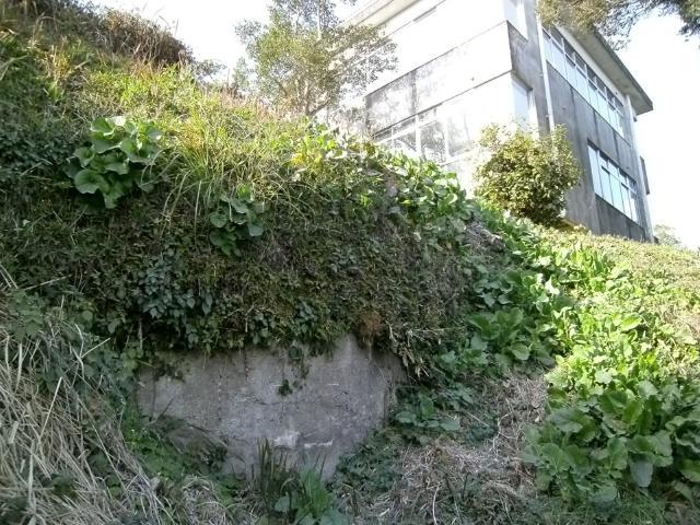 串良大塚山 (4)