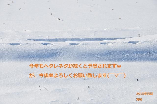DSC_0224_20150101142607305.jpg
