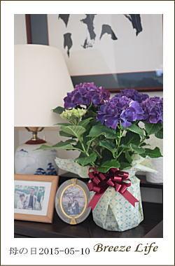 mothersday150510.jpg
