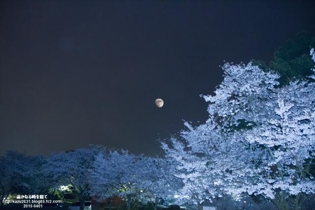 田代公園-0401