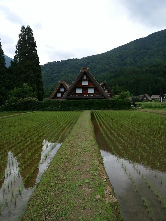 養蚕の歴史に触れて 白川村 田島家展示館 新しい観光スポット ⑧