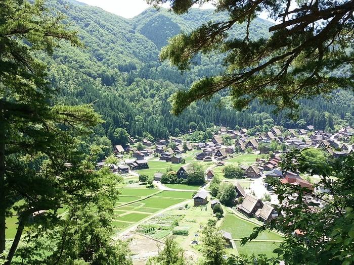 日本の元風景を感じる合掌風景が残る、自然いっぱいのロケーション白川郷 ①