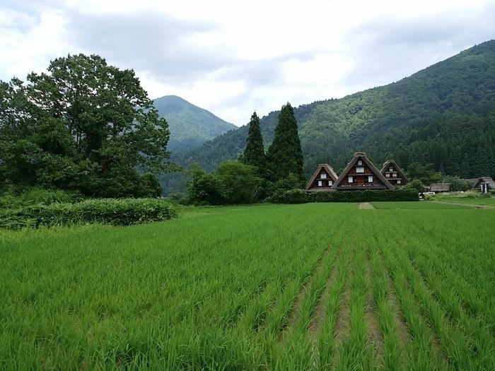 日本の元風景を感じる合掌風景が残る、自然いっぱいのロケーション白川郷 ②