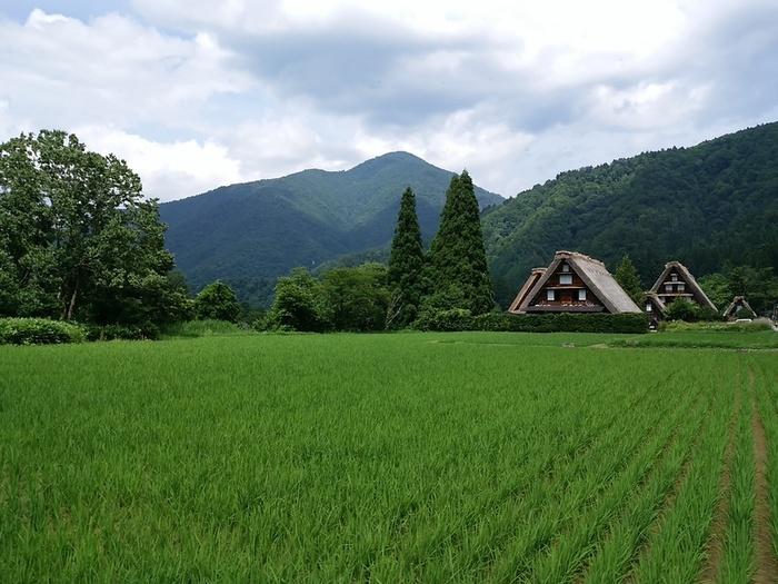 日本の元風景を感じる合掌風景が残る、自然いっぱいのロケーション白川郷 ④