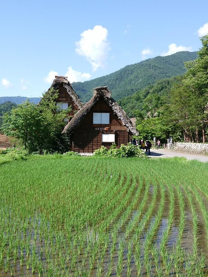 日本の元風景を感じる合掌風景が残る、自然いっぱいのロケーション白川郷 ⑤
