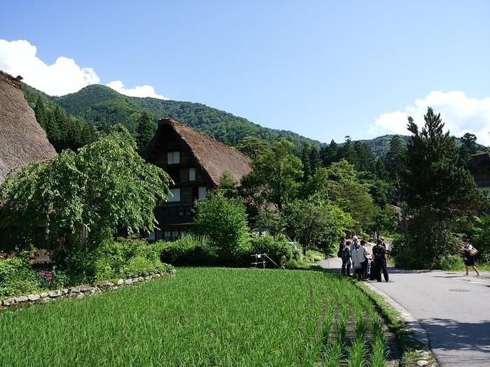 日本の元風景を感じる合掌風景が残る、自然いっぱいのロケーション白川郷 ⑦