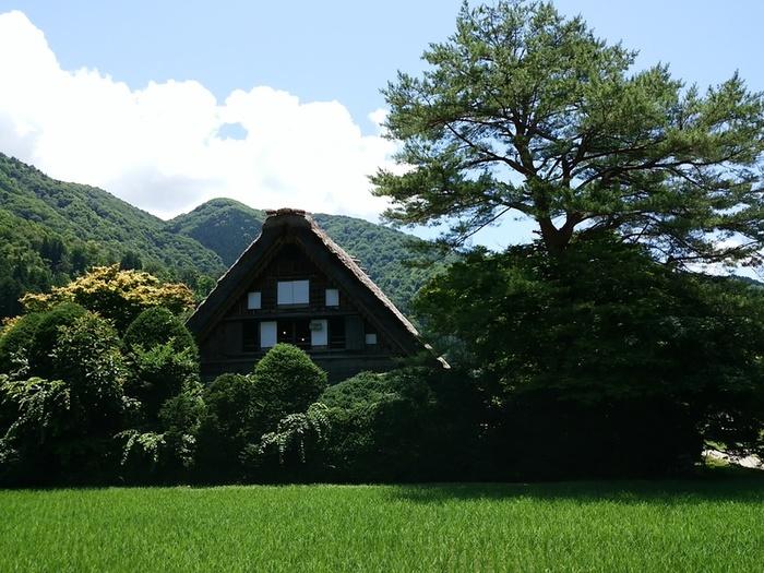 日本の元風景を感じる合掌風景が残る、自然いっぱいのロケーション白川郷 ⑧