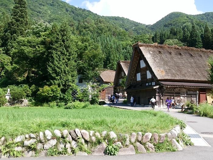 そろそろ夏休みモードの白川郷で、熱ーい世界遺産を楽しんでくださいね! ①