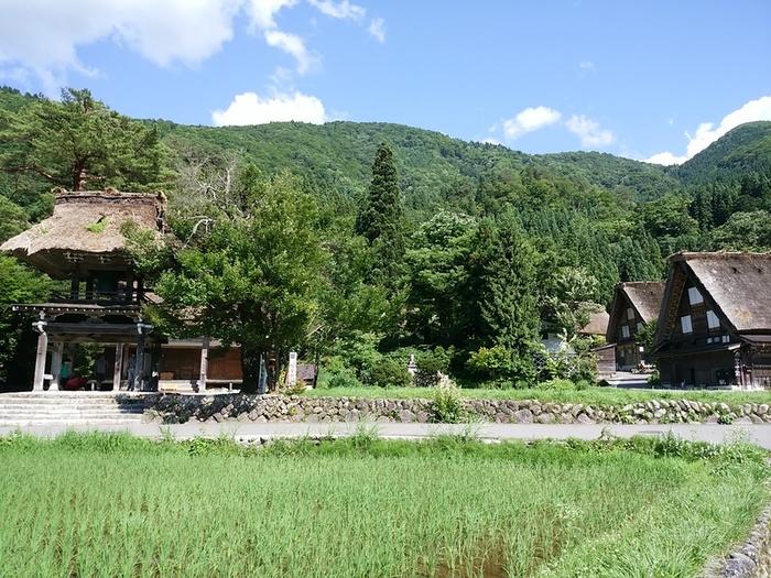 そろそろ夏休みモードの白川郷で、熱ーい世界遺産を楽しんでくださいね! ④