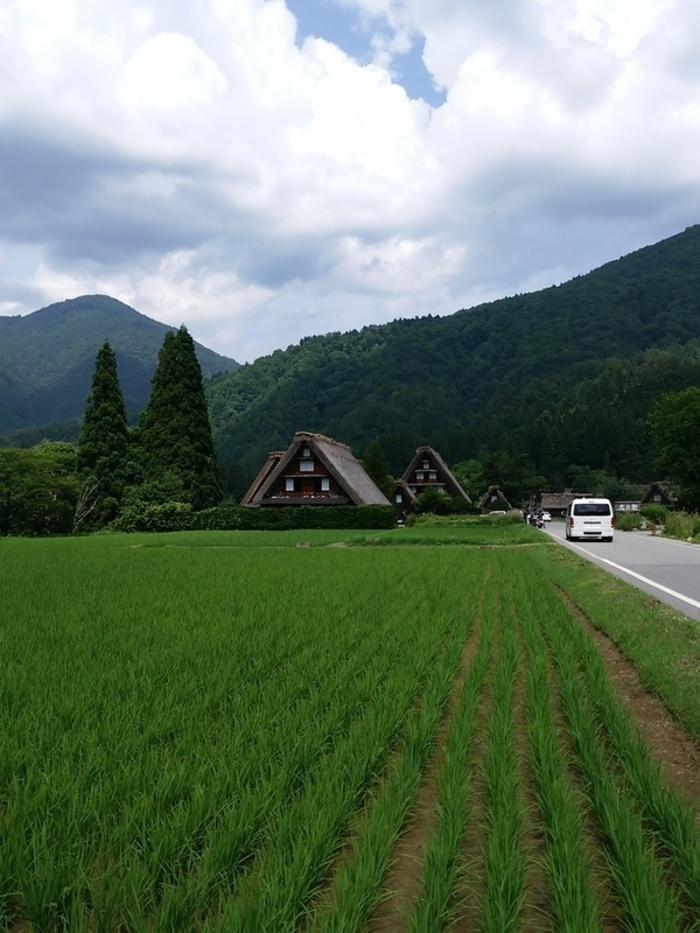 待ちに待った夏休みの世界遺産旅行!大自然を眺めながら、白川郷合掌集落へ ②