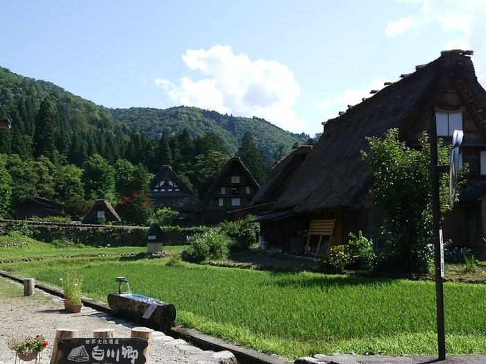 待ちに待った夏休みの世界遺産旅行!大自然を眺めながら、白川郷合掌集落へ ⑦