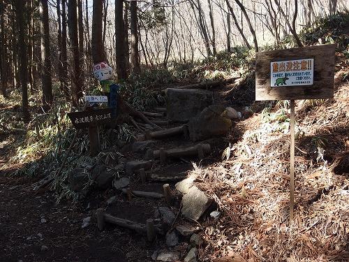 20150222_mizusawayama-003.jpg