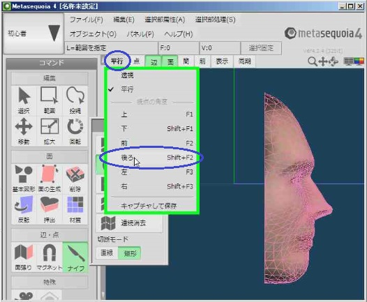 face07.jpg
