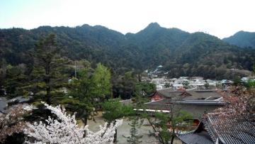 2015-4-5miyajima 099