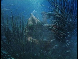 藻に絡まる魚人間