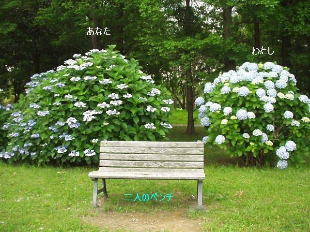二人のベンチ