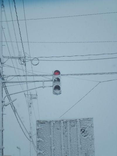 信号機の雪