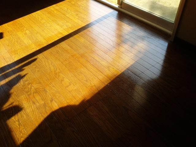 ワックスをかけた床