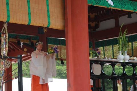 鶴岡八幡宮・菖蒲祭の儀式