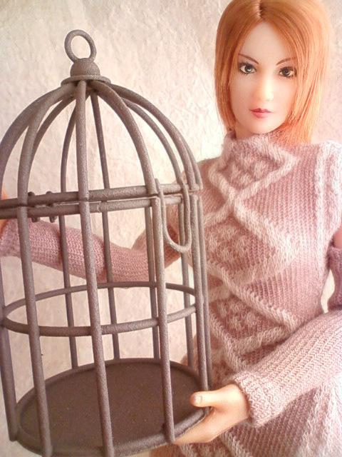 bird_cage_c.jpg