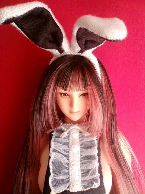 bunny_swallow_a.jpg