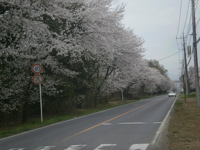 P3250135.jpg