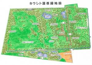 緑地図元図_R