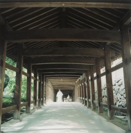 TOY-816_Yashica.jpg