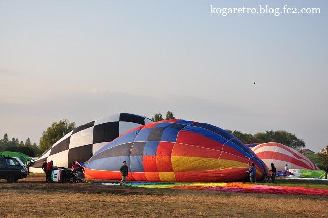 渡良瀬遊水地の熱気球