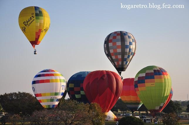 渡良瀬遊水地の熱気球2