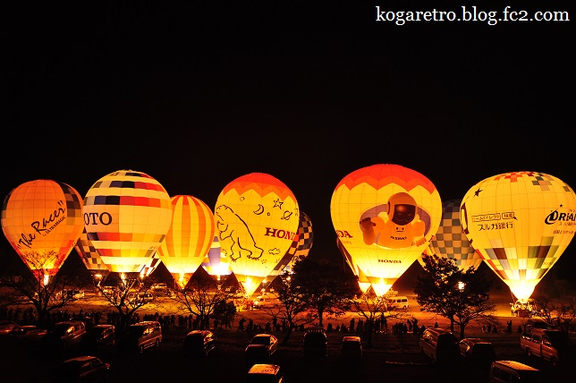 渡良瀬遊水地の熱気球4