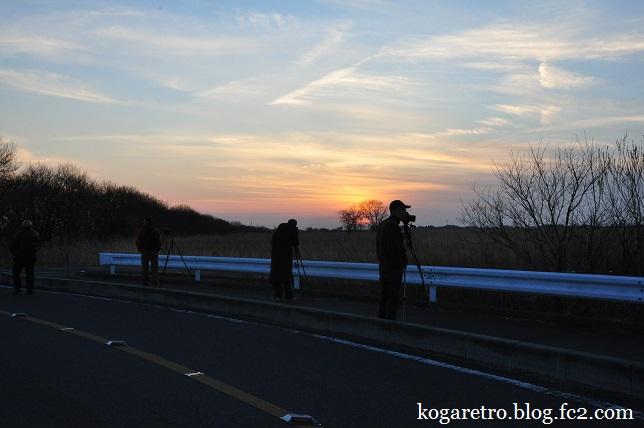 渡良瀬遊水地の夕日(3)5