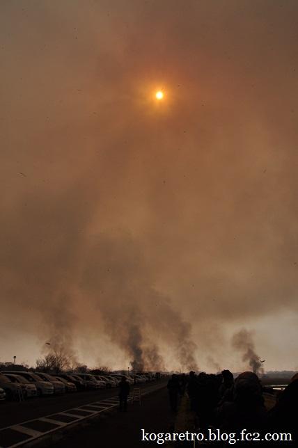 2015渡良瀬遊水地のヨシ焼き9