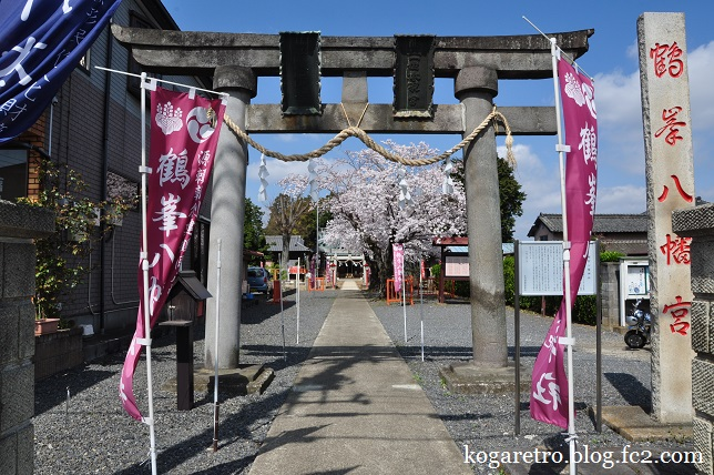 鶴峯八幡宮の桜