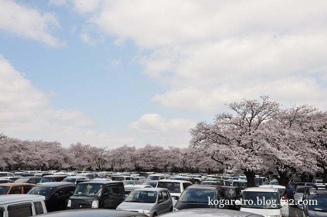 三桜工業の桜