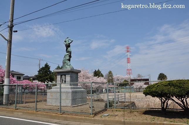 桃公園の桜4