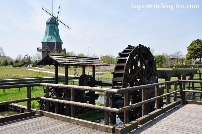 霞ヶ浦の風車とチューリップ5