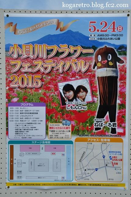 小貝川フラワーフェスティバル8