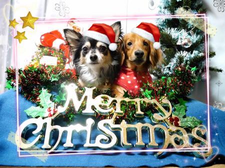 2014-12-20-18-22-11_deco_convert_20141220210134.jpg