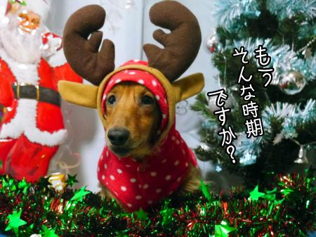 2014-12-20-18-26-23_deco_convert_20141220210205.jpg