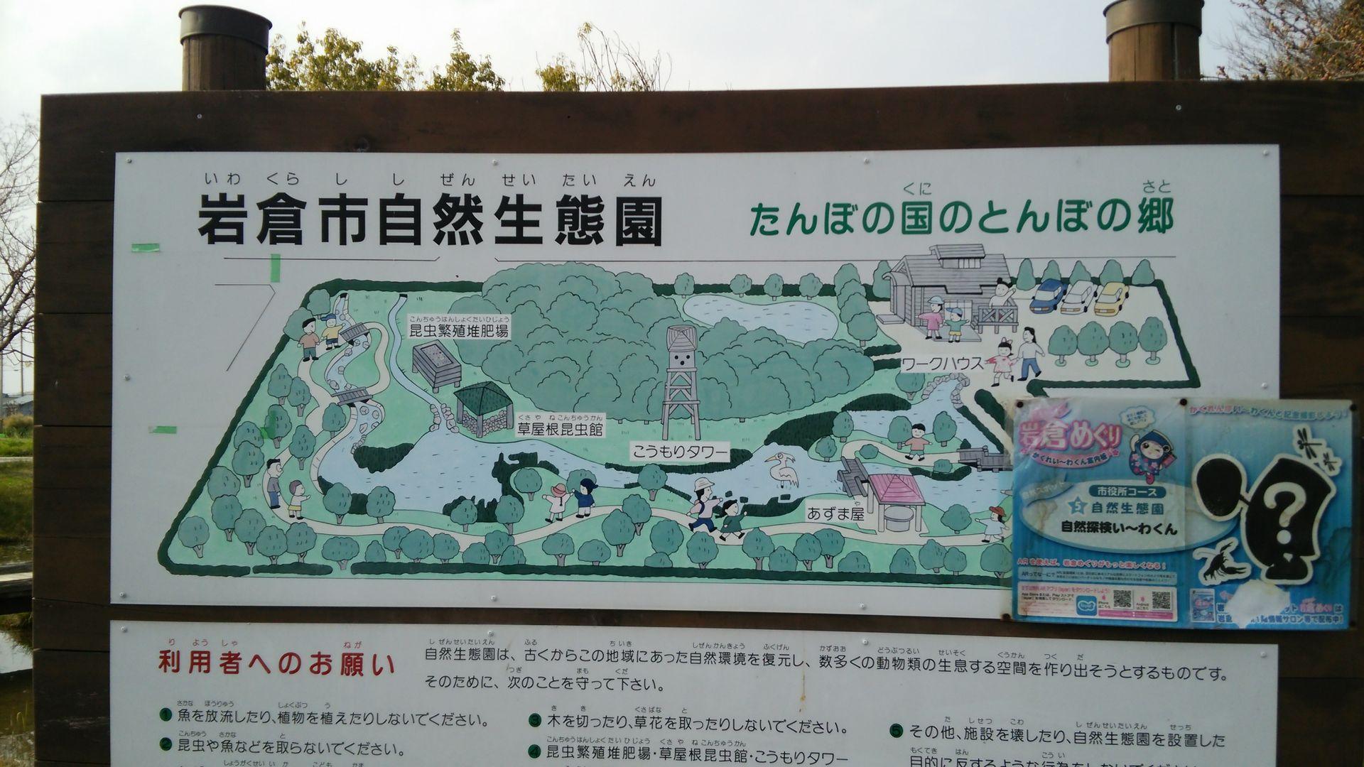 iwakurasei01.jpg