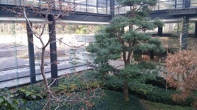 ryokukacenter06.jpg