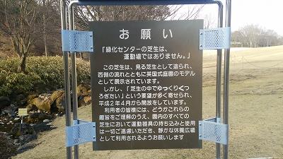 ryokukacenter12.jpg