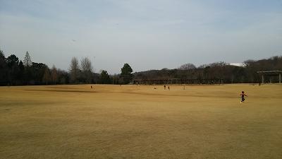 ryokukacenter15.jpg