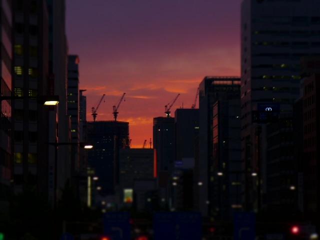 B20150421P_yuuyake_P1050846.jpg