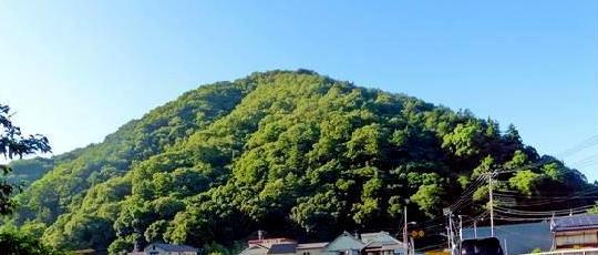 臥龍山 (玉松城跡)