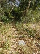 加治田城跡への階段